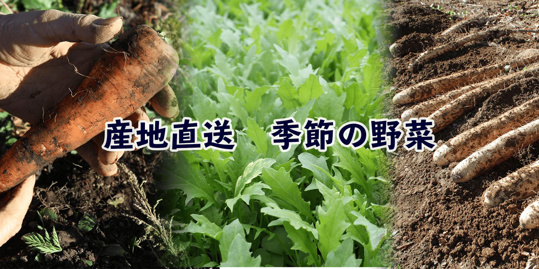 トップ野菜